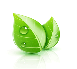 Green Carpet Cleaning, Green Leaf Icon