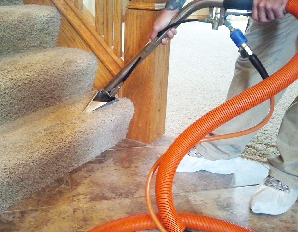 coronavirus questions, carpet cleaning offer