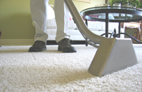 Treating Stains and Odors, Cleaning Minneapolis and Saint Paul area Residential Carpeting